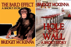 The Bard Effect and Hole in the Wall, on sale now for the Amazon Kindle