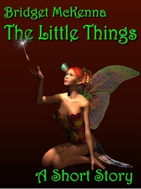 The Little Things, by Bridget McKenna